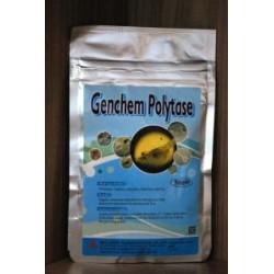Genchem Polytase - 50 gram -