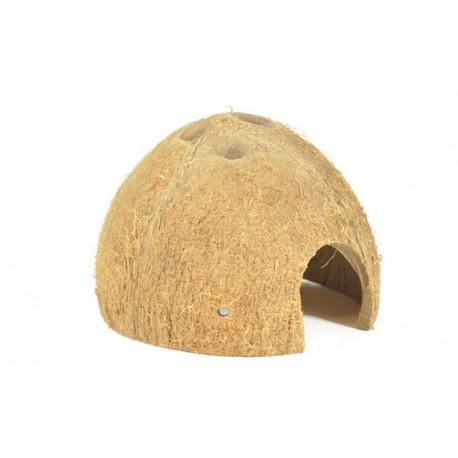 Kokos skorupa połówka nieszczotkowana