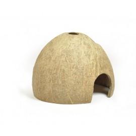 Kokos skorupa połówka szczotkowana