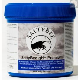 SaltyBee gh + premium 550 gram