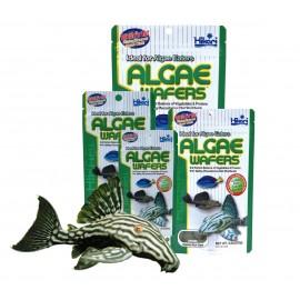 Hikari Algae Wafers 20g dla glonojadów
