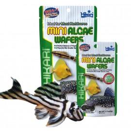 Hikari Mini Algae Wafers 20g dla glonojadów
