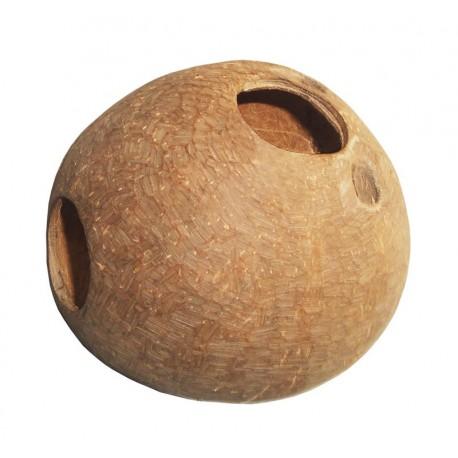 Kokos skorupa cała szczotkowana