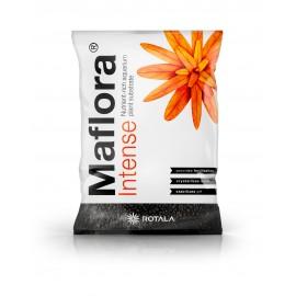 Rotala Maflora Intense Normal - 10l