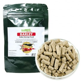 BWS Barley - opakowanie 40 gram